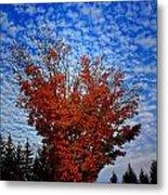 Autumn Sky Drama Metal Print