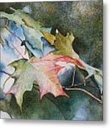 Autumn Sparkle Metal Print by Patsy Sharpe