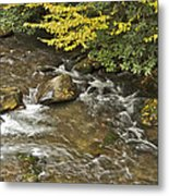 Autumn Stream 6149 Metal Print