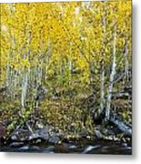 Autumn Stream II Metal Print