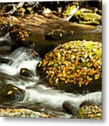 Autumn Stream Metal Print by Lena Auxier