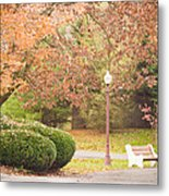 Autumn Stroll Metal Print