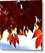 Autumn Sun Glory Metal Print