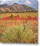 Autumn Sunrise Along The Mesa Trail Metal Print