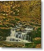 Autumn Surrounded In Color Metal Print