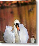 Autumn Swan Metal Print by Leslie Leda