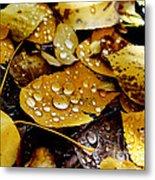 Autumn Tears Metal Print