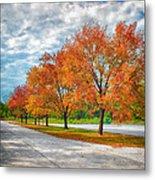 Autumn Trees At Busch Metal Print