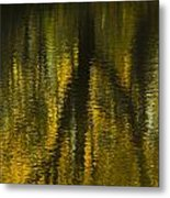 Autumn Water Reflection Abstract I Metal Print