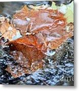 Autumn Waters Metal Print