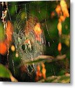 Autumn Web Metal Print