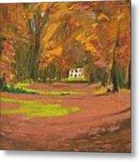Autumn Woods 3 Metal Print