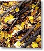 Autumnal Melody Metal Print