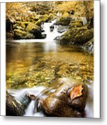 Autumnal Stream Metal Print by Mal Bray