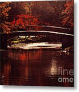 Autumnal Sunshine Metal Print by Dana DiPasquale