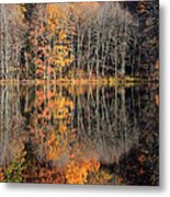 Autumns Art Metal Print