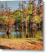 Autumn's Beauty And Reflection Metal Print