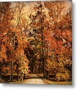 Autumn's Entrance Metal Print by Jai Johnson
