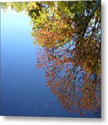 Autumn's Watery Reflection Metal Print