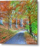 Autumns Way Vert Metal Print by John Kelly
