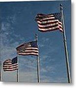 Avenue Of Flags Metal Print