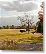 Avery Hill Parkland Metal Print