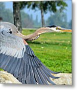 Away From Here Metal Print