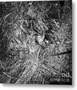 Abstraction 547 - Marucii Metal Print