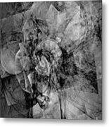 B-w 0561 Metal Print