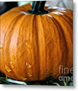 Baby Pumpkin Tears Metal Print