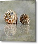 Babylon Shells Metal Print
