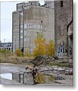 Back Of Warehouse Branches 1 Metal Print