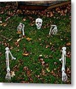 Back Yard Bone Yard Metal Print by LeeAnn McLaneGoetz McLaneGoetzStudioLLCcom