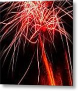 Backyard Fireworks 2012 4 Metal Print