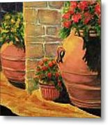 Backyard Pots Metal Print