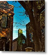 Backyard View Charleston Sc Metal Print