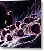Bacteria, Computer Artwork Metal Print by Animate4.comscience Photo Libary