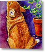 Bad Puppy In Mom's Geranium Metal Print