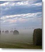 Bails In Fog Metal Print