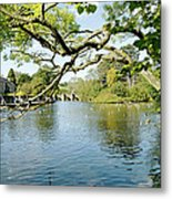Bakewell Riverside - Through The Branches Metal Print