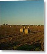 Bales In Peanut Field 13 Metal Print