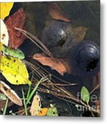 Balls In Your Corner Metal Print