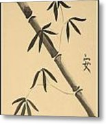 Bamboo Art In Sepia Metal Print