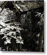 Bamboo Garden -2 Metal Print