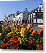 Banbridge, Co. Down, Ireland Metal Print