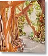 Banyan In The Afternoon Metal Print
