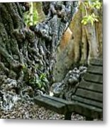 Banyan Tree And Park Bench Metal Print by Dennis Clark