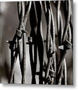 Barbbed Wire 2 Metal Print