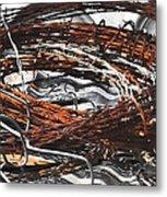 Barbed Metal Print