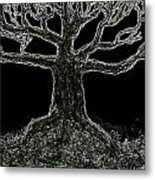 Bare Branches II Metal Print